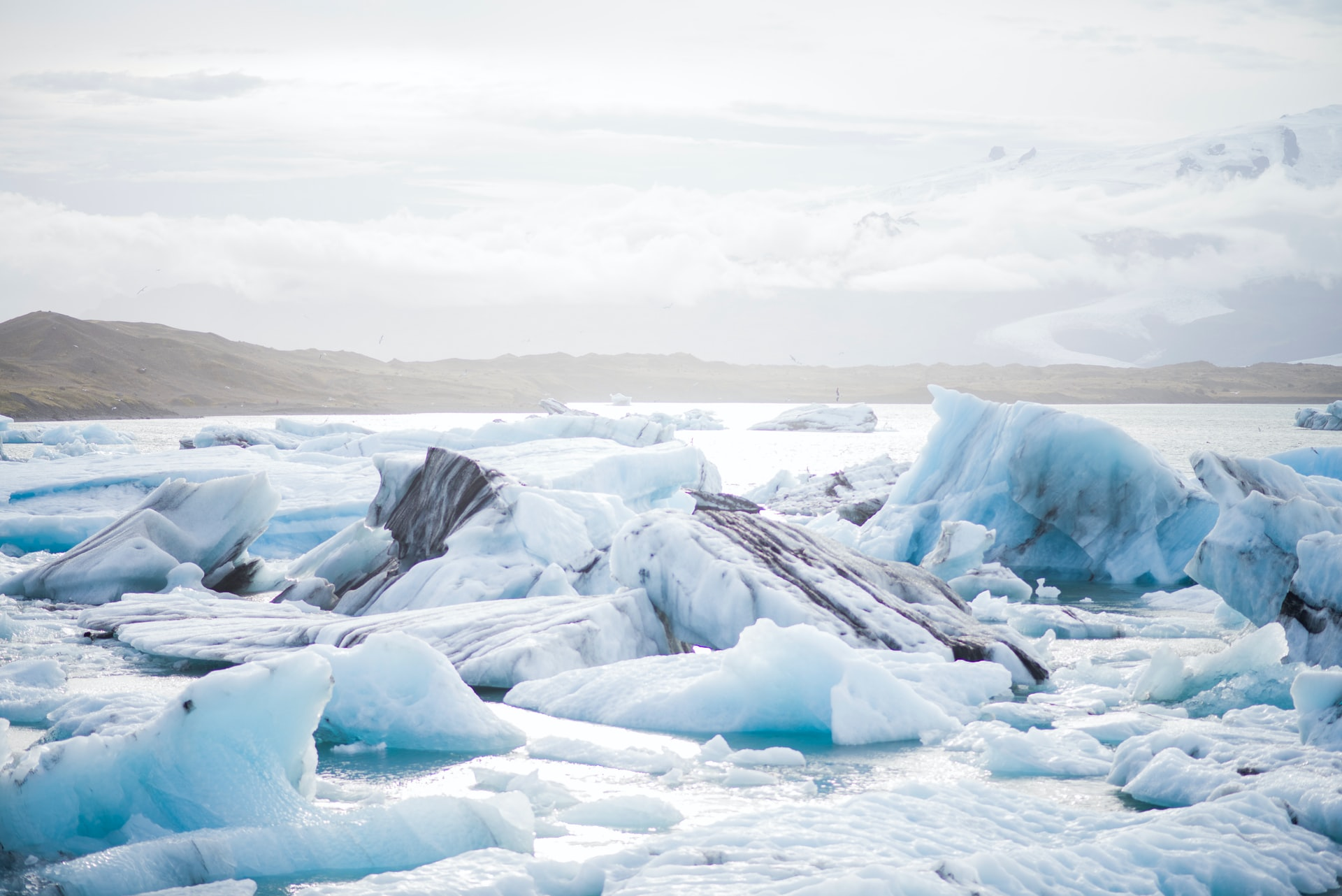 До 22 октября можно подать заявку на форум молодых лидеров стран Арктического совета